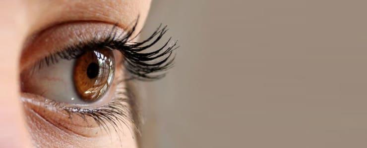 Si es la primera vez que usas lentes de contacto o hace mucho tiempo que no las utilizas y no recuerdas muy bien el procedimiento, aquí dejamos unos sencillos pasos… Me Interesa