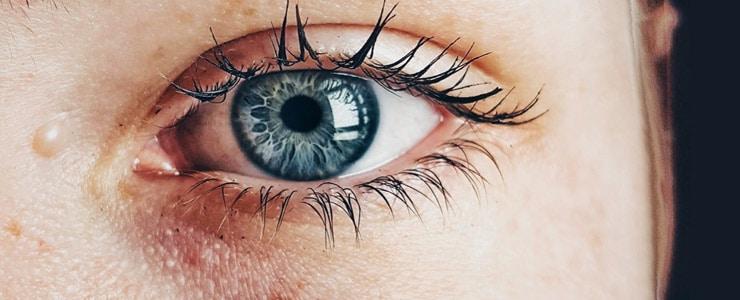 La crema para el contorno de ojo es cada vez más utilizada para retrasar la aparición de líneas de expresión además de reducir las ojeras e hinchazón en la zona… Me Interesa