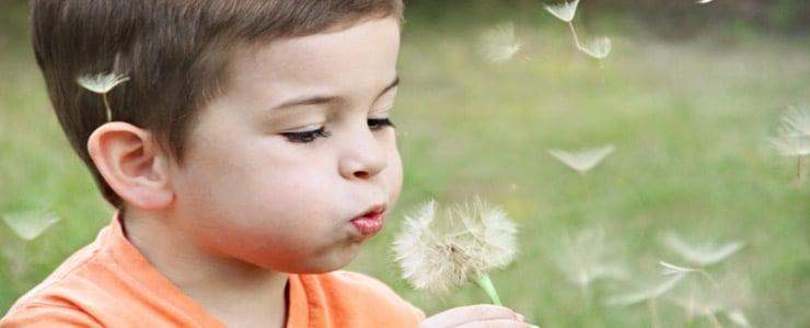 Nuestros hijos pasan una gran parte de su tiempo jugando. Por eso, conviene no dejar la elección de los juguetes al azar, ya que influyen en el desarrollo de sus… Me Interesa